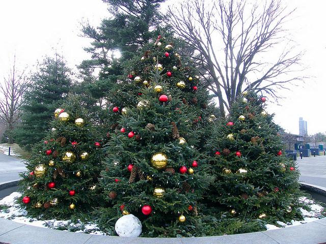 Karácsonyfa, az ünnepi szimbólum