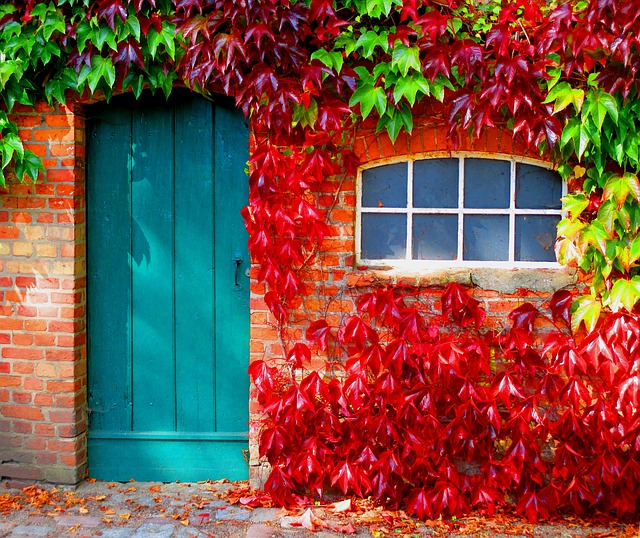 Élénk színű beltéri ajtó